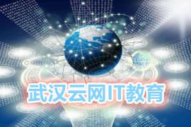 武汉大学云网IT教育